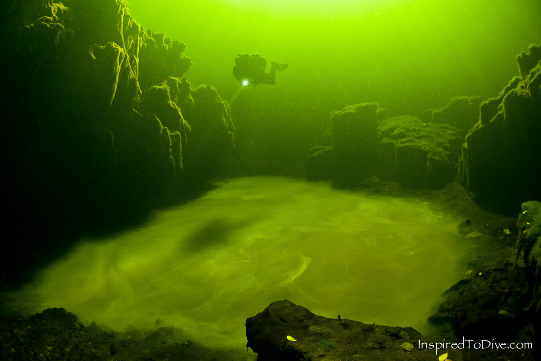Scuba diver over unusual pool of water in a cenote in Sistema Ox Bel Ha in Mexico