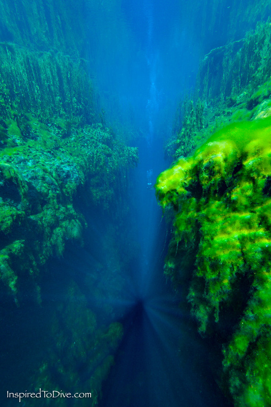 Scuba diver in The Chasm in Piccaninnie Ponds Conservation Park in South Australia